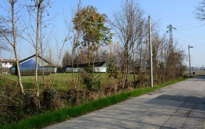 Timber House v5